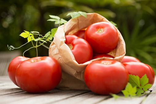 Tomato「Tomatos outdoors」:スマホ壁紙(19)