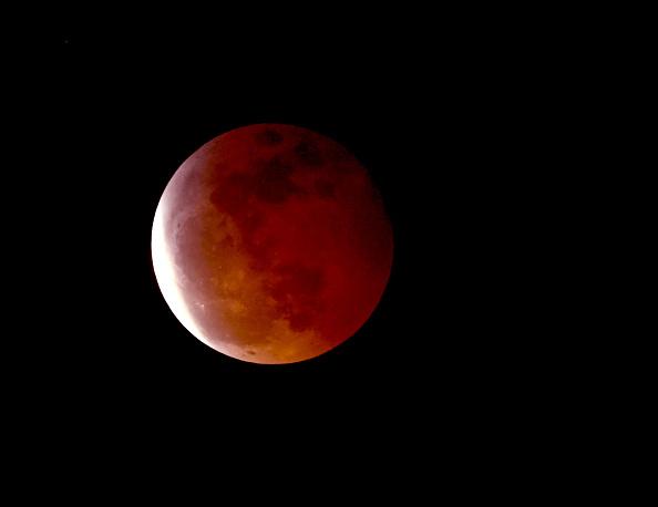 Variation「Views of Super Blood Wolf Moon」:写真・画像(19)[壁紙.com]