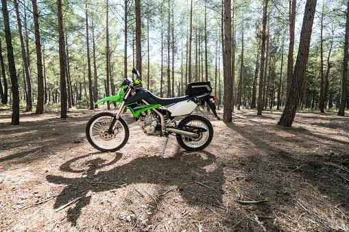 Motorcycle「Dirt bike in the forest」:スマホ壁紙(16)