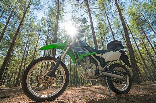 Motorcycle「Dirt bike in the forest」:スマホ壁紙(1)