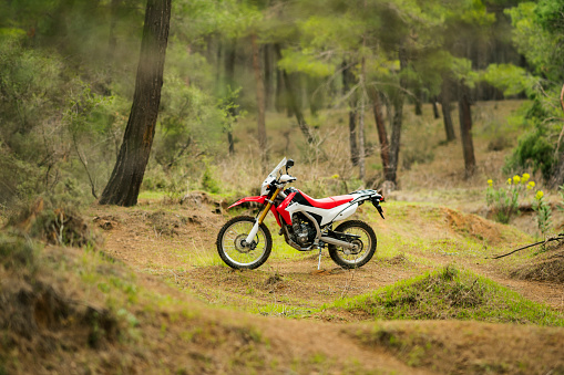 Motorcycle「Dirt bike in the forest」:スマホ壁紙(8)