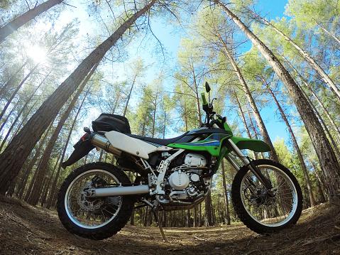 モータースポーツ「Dirt bike in the forest」:スマホ壁紙(16)