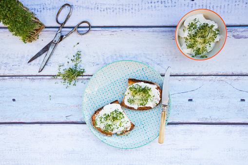 水色「Slice of toasted bread with organic curd and cress」:スマホ壁紙(0)