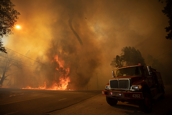 Sequoia National Forest「French Fire In California Burns Almost 15,000 Acres」:写真・画像(5)[壁紙.com]