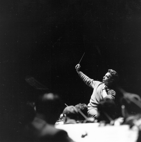 Conductor's Baton「Von Karajan」:写真・画像(13)[壁紙.com]