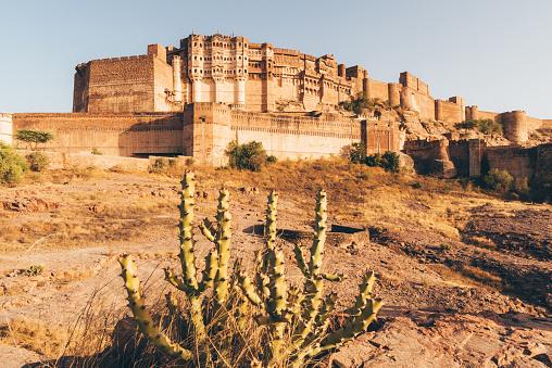 Jodhpur「Mehrangarh Fort, Jodhpur, India」:スマホ壁紙(19)