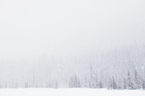Wilderness Area「Blizzard on Mt. Hood」:スマホ壁紙(1)