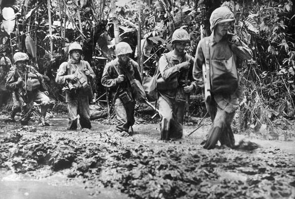 Tropical Rainforest「War In The Pacific」:写真・画像(3)[壁紙.com]
