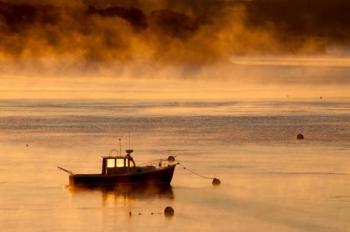 太陽の光「消防船」:スマホ壁紙(18)