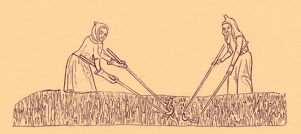 Drawing - Activity「Peasants weeding the corn」:写真・画像(16)[壁紙.com]