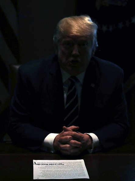 Mark Wilson「President Trump Meets With Members Of Congress In The White House Cabinet Room」:写真・画像(15)[壁紙.com]