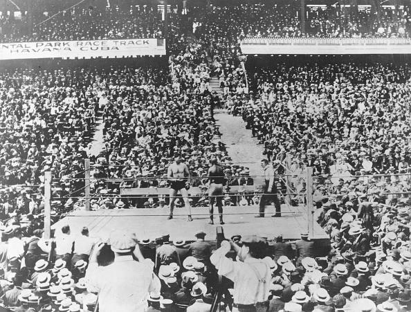 Boxing - Sport「Johnson V Willard」:写真・画像(7)[壁紙.com]