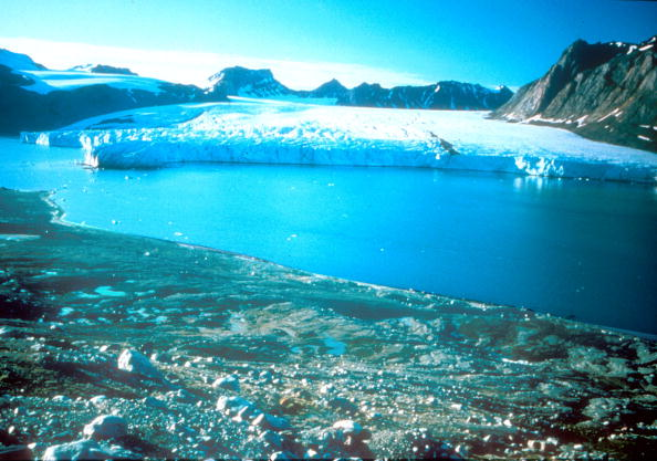 Arctic「Greenland  Due To Global Warming The Ice Cap In The Past 5 Years Has Shr」:写真・画像(19)[壁紙.com]