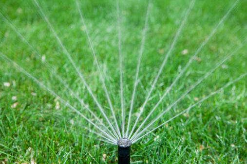Sprinkler「Garden Hose Sprinkler」:スマホ壁紙(0)