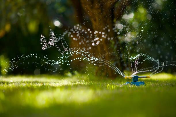 Garden Hose Sprinkler:スマホ壁紙(壁紙.com)