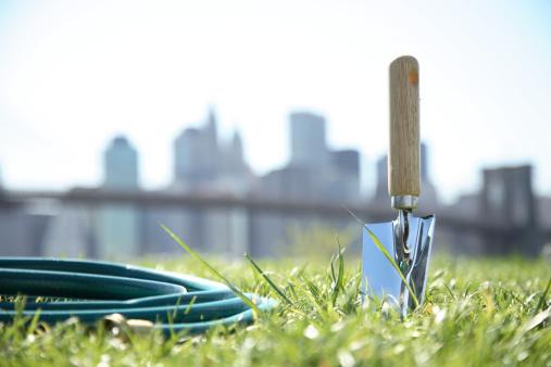 Hose「Garden hose and trowel on grass, New York skyline in background, ground view」:スマホ壁紙(7)