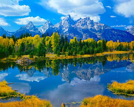 Grand Teton「Beaver Pond At Grand Teton National Park」:スマホ壁紙(2)