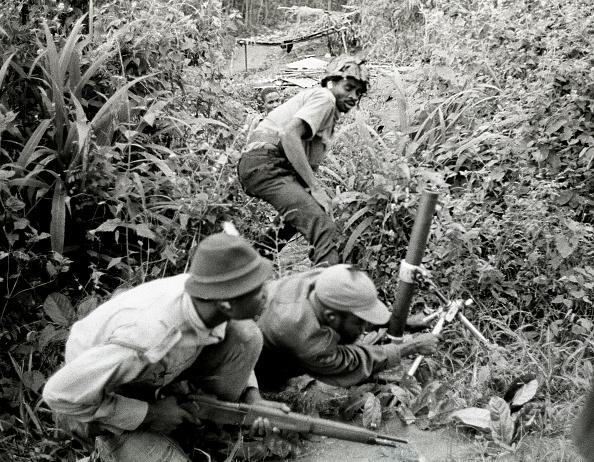 The Natural World「Africa war」:写真・画像(16)[壁紙.com]