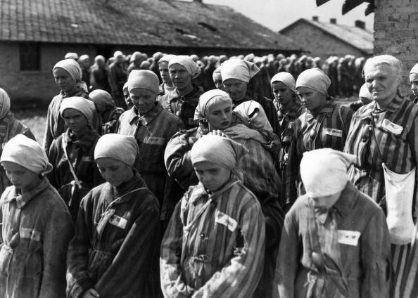 Concentration Camp「The Last Stage」:写真・画像(14)[壁紙.com]