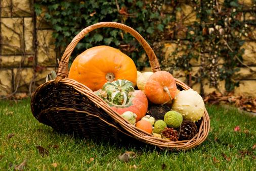 Easter Basket「Gifts of autumn.」:スマホ壁紙(0)