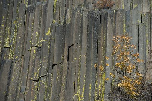 Basalt「Devils Postpile National Monument, Mammoth Mountain, Mammoth Lakes, California, USA」:スマホ壁紙(1)