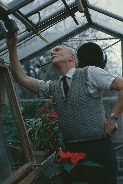 Greenhouse「Stanley Brown」:写真・画像(9)[壁紙.com]