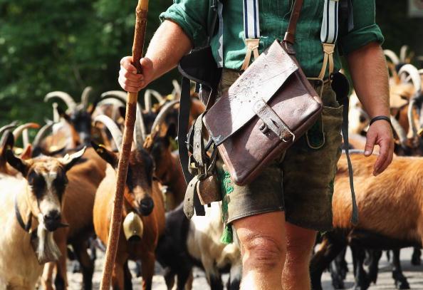 Vertebrate「Ceremonial Goat Drive In Bavarian Mountains」:写真・画像(10)[壁紙.com]