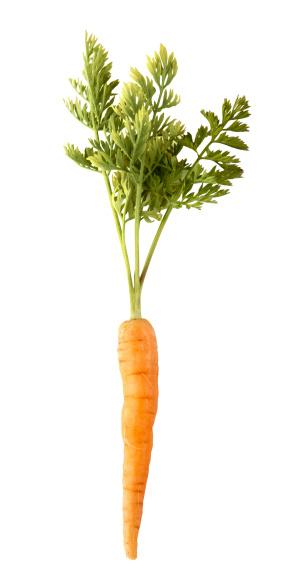 Carrot「Carrot」:スマホ壁紙(1)