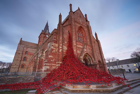 Installation Art「Poppy Installation Opens In Orkney, Marking The Start Of The UK's Battle Of Jutland Centenary Commemorations」:写真・画像(7)[壁紙.com]