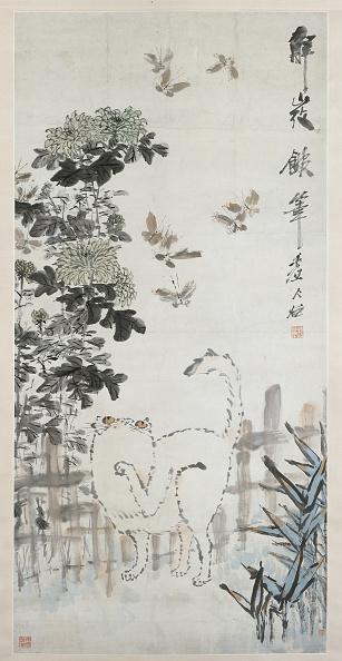 Chrysanthemum「Cat And Butterfly」:写真・画像(4)[壁紙.com]