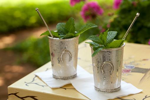 Mint Leaf - Culinary「Mint Julep in Kentucky Derby Style Metal Cup」:スマホ壁紙(19)