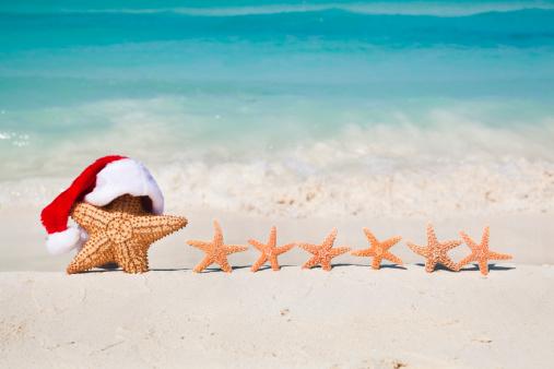 Sled「Christmas Santa Claus Starfish in Tropical Beach Family Vacation Holiday」:スマホ壁紙(19)