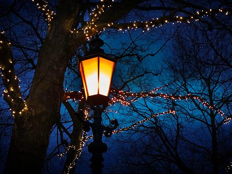 オランダ「Christmas Street Decorations」:スマホ壁紙(8)