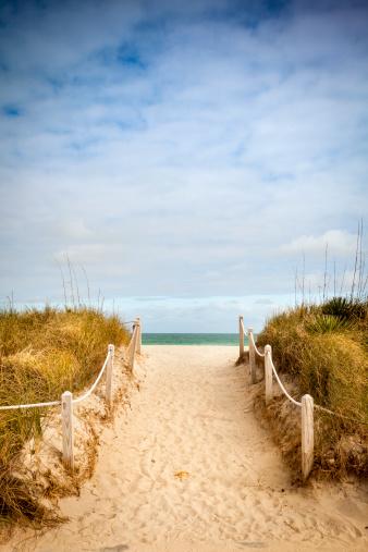 Miami Beach「砂浜のビーチへ続く小道」:スマホ壁紙(11)