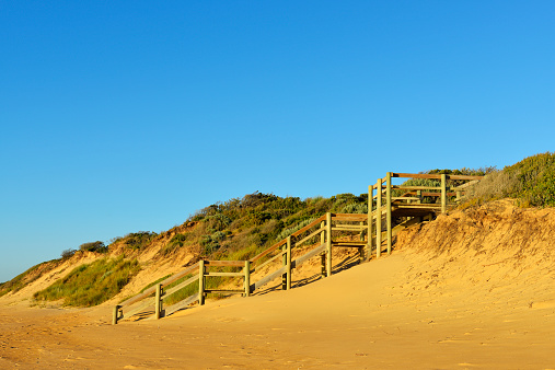 90マイルビーチ「Path to the Beach with Morning Sun」:スマホ壁紙(3)