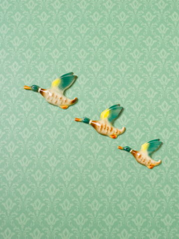 Compatibility「Flying duck ornaments on wallpapered wall」:スマホ壁紙(13)