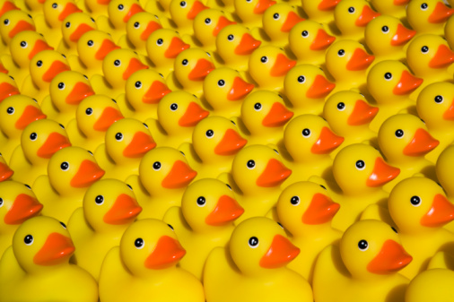 Equality「Rows of rubber ducks, close-up, full frame」:スマホ壁紙(4)