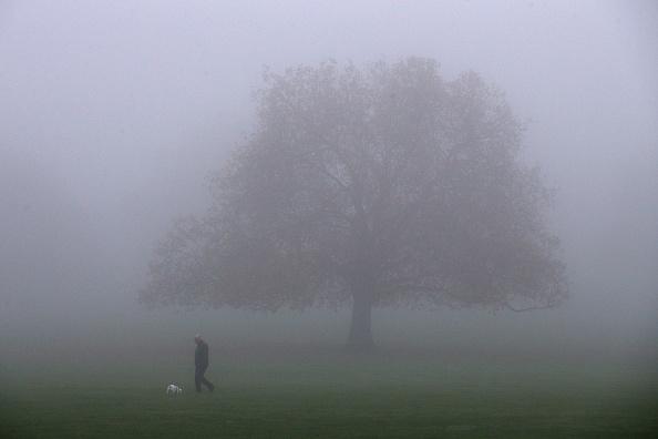 Fog「Fog Affects Rush Hour Traffic」:写真・画像(4)[壁紙.com]