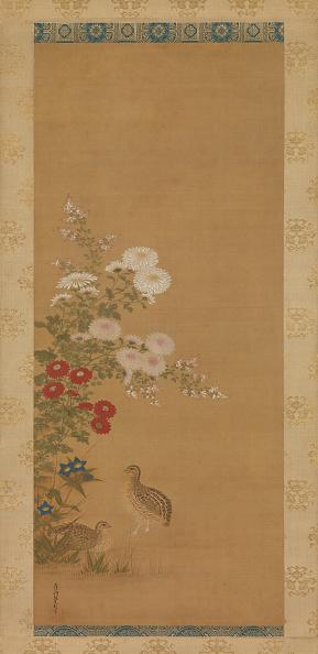 Chrysanthemum「Quail And Autumn Flowers」:写真・画像(15)[壁紙.com]