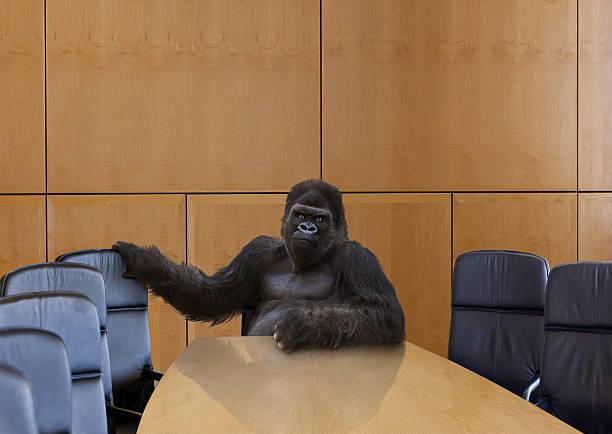 A gorilla in the board room:スマホ壁紙(壁紙.com)