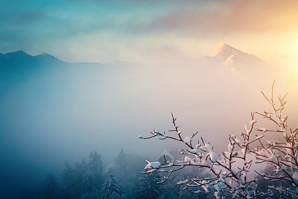 冬の日の出:スマホ壁紙(壁紙.com)