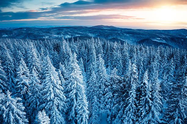 冬の日の出 :スマホ壁紙(壁紙.com)