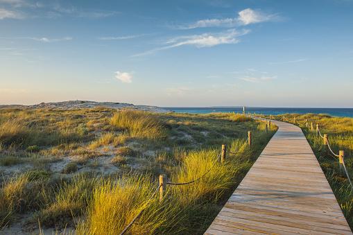 Wooden Post「Ses Illetes beach」:スマホ壁紙(11)