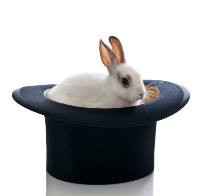 Baby Rabbit「White Baby Bunny and Top Hat」:スマホ壁紙(9)