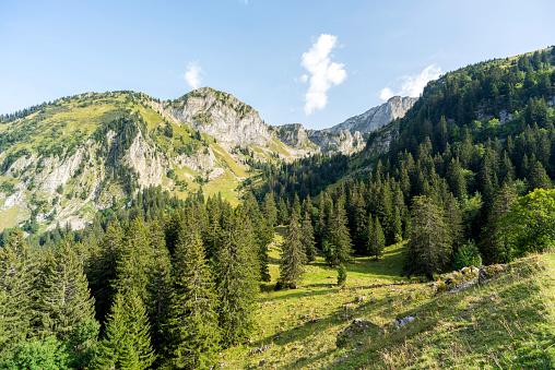 Vaud Canton「Mountain above the city of Montreux, near the Jaman Mountain Pass, Switzerland」:スマホ壁紙(16)