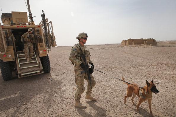 Daniel Gi「U.S. Soldiers Provide Security Around Kandahar Airfield」:写真・画像(0)[壁紙.com]