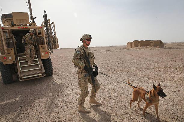 U.S. Soldiers Provide Security Around Kandahar Airfield:ニュース(壁紙.com)