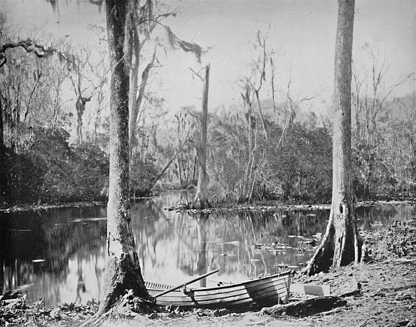 Florida - US State「A Feeder Of The St Johns River」:写真・画像(10)[壁紙.com]
