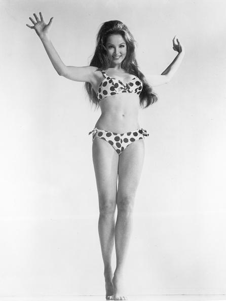 水着「Julie Newmar in bikini」:写真・画像(19)[壁紙.com]