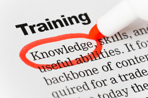 """Human Resources「Under the heading """"Training"""", """"Knowledge"""" is highlighted in red.」:スマホ壁紙(13)"""